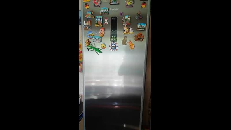 Ремонт холодильника канди на дому в омске