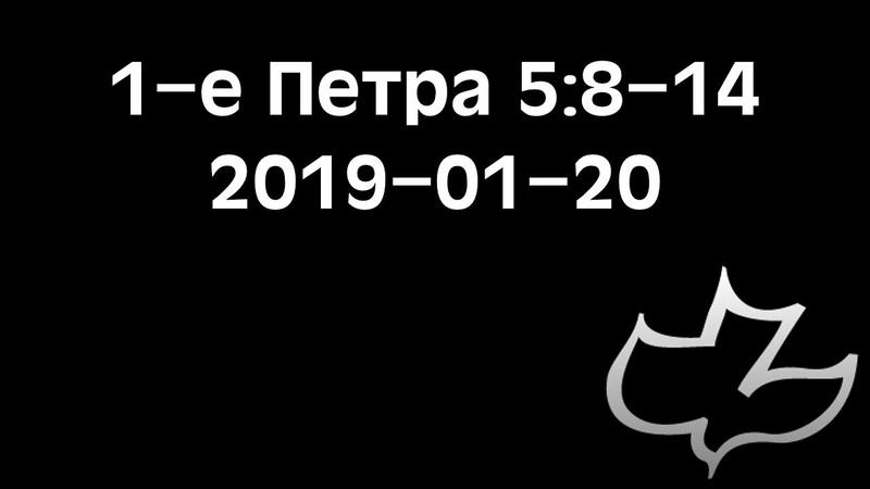 1-е Петра 5:8-14 (20.01.2019)