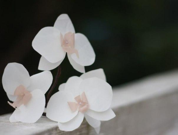Элегантная орхидея из ткани от Eliza - Jewel Box Ballerina