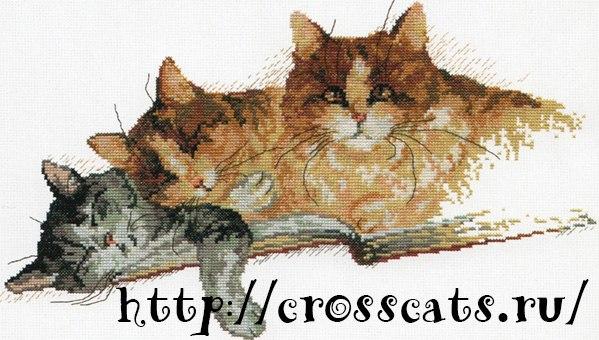 Кри кота схема для вышивания