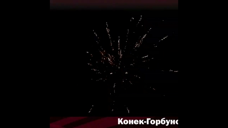 ТС 630 КОНЕК-ГОРБУНОК (0.8Х16)