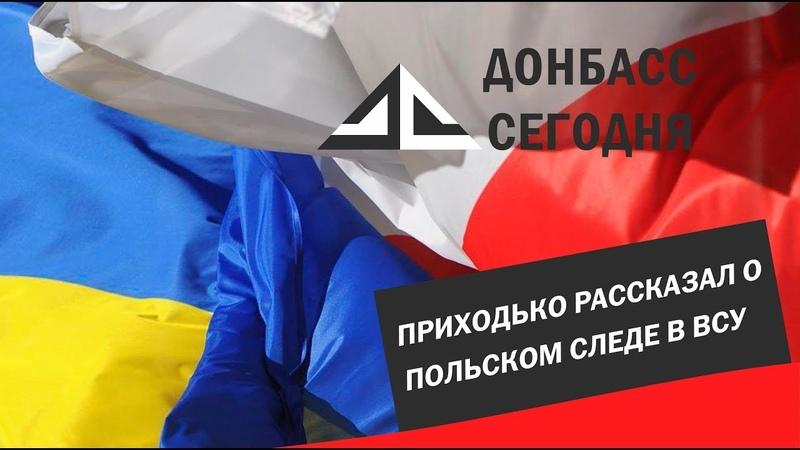 Приходько рассказал о польском следе в ВСУ