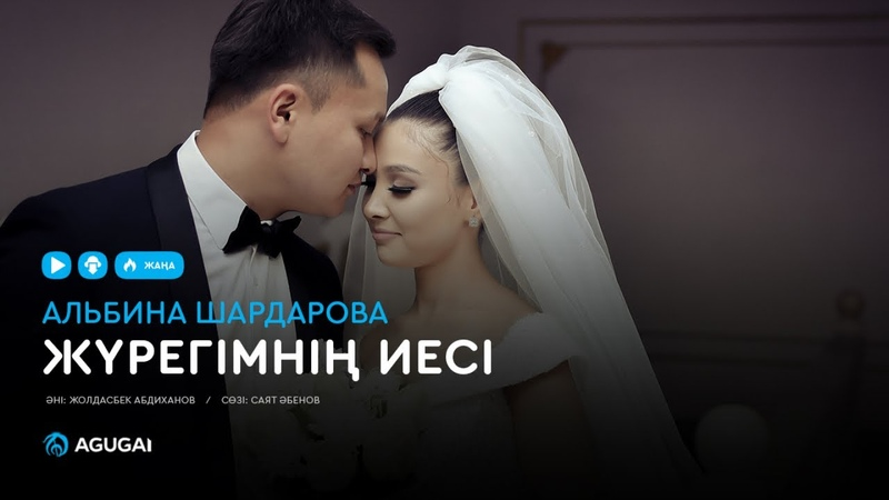 Альбина Шардарова - Жүрегімнің иесі (аудио)