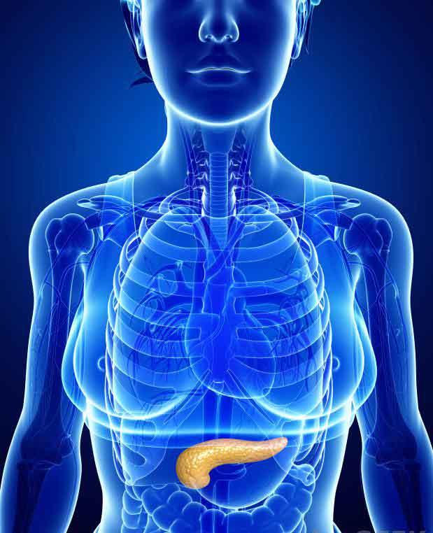 Если поджелудочная железа не может правильно продуцировать инсулин, уровень глюкозы в крови может повышаться