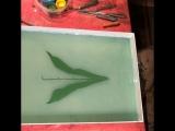 Рисую на воде ландыш.