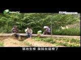 2014-01-06 客家電視台《結果了》 第1集 山凹肚那家人