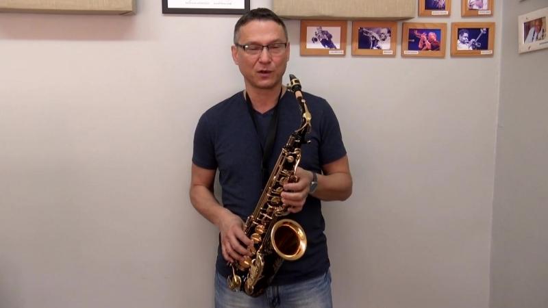 Обзор альт саксофона Made in China. Китайский Selmer - что это