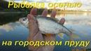 Рыбалка осенью на городском пруду.