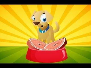 Köpeğim Hav Hav Der - Çocuk Şarkısı