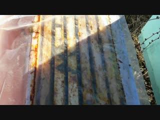Зимняя вентиляция ульев. Борьба с налетом синиц.