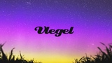 Vlegel - Alone in the Dark (Bluesolar Chill Out Mix)