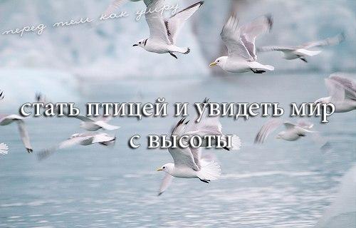 ПЕРЕД ТЕМ, КАК УМРУ, Я ХОЧУ...(2)