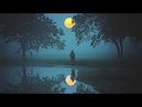 Bee Hunter Moonwater 2018 Re Edit Perplexity Music