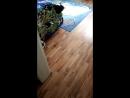 перестановка игрушек детская комната мальчик девочка котэ фрг эссен