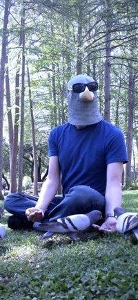 Человек Голубь