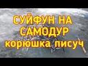 Рыбалка Суйфун корюшка писуч на самодур Full HD