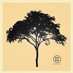 MitiS альбом For Miles & Miles