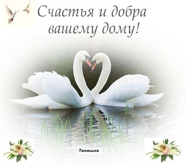 https://pp.vk.me/c312423/v312423297/90fe/s9Zfh0LAm34.jpg