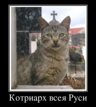 Дмитрий Сео, 24 августа 1990, Нижний Новгород, id194301195