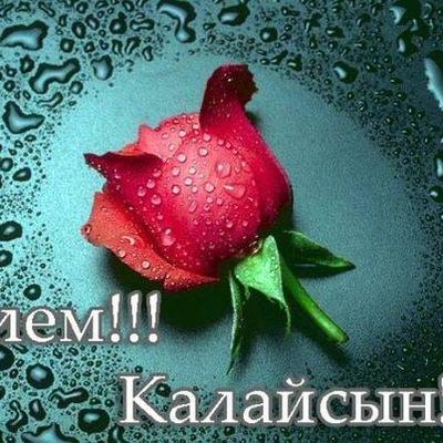 Саламат Токтабаев, 27 ноября 1993, Стаханов, id203319305