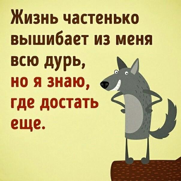 https://pp.userapi.com/c847121/v847121401/fad05/FybkZ4Ad4S8.jpg