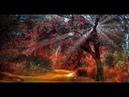 Canto Gregoriano - Paz Interior - Iluminación - Música Sanadora (Chant Grégorien - Eclairage)