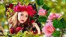 ♫ На весіллі у кумів Українські весільні пісні Велика збірка найкращих пісень
