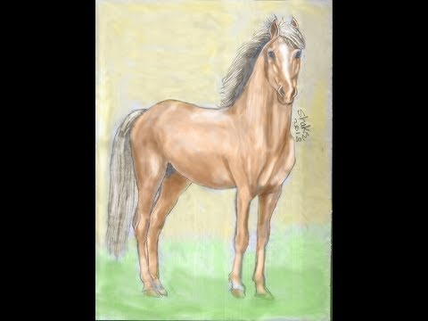 Draw a horse with only five minutes full movie رسم حصان بخمس دقائق فقط الفلم كامل