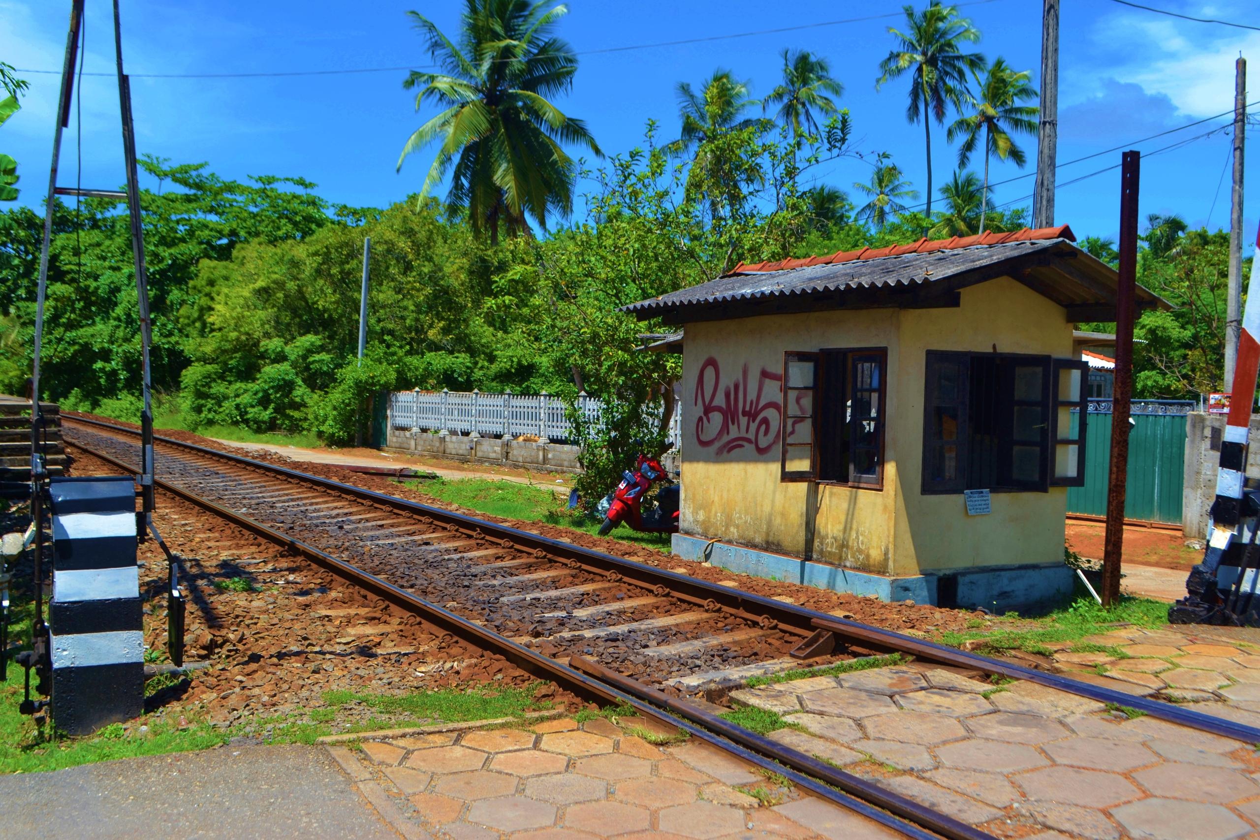 Шри Ланка (фото) - Страница 2 TaQQ2Wor6-Y