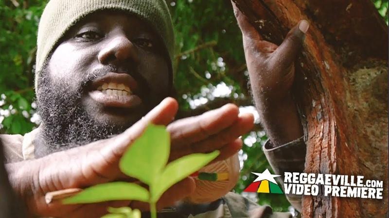 Stranjah Miller Soldier for Jah Official Video 2019
