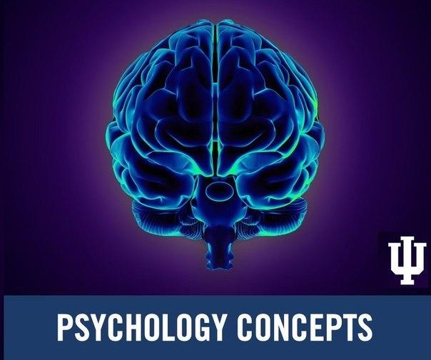 Факты о психологии 1. Наблюдения психологов показывают, что при личных контактах собеседники не способны смотреть друг на друга постоянно, а лишь не более 60% общего времени. Однако время зрительного контакта может выходить за эти пределы в двух случаях: у влюбленных и у агрессивно настроенных людей. Поэтому если малознакомый человек долго и пристально смотрит на вас, чаще всего это говорит о скрытой агрессии. 2. Длительность визуального контакта зависит от расстояния между собеседниками. Чем…