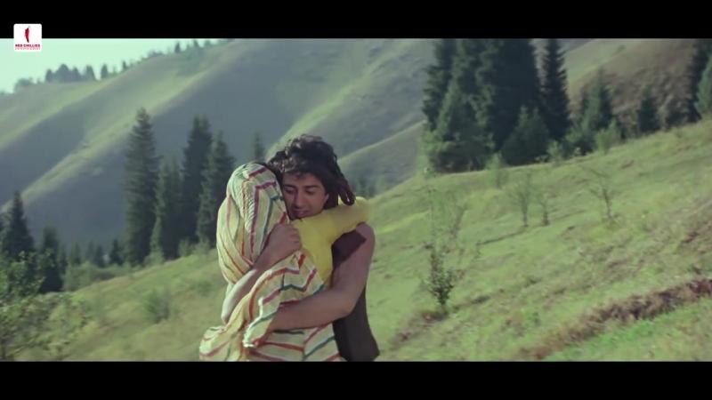 Sohni Meri Sohni _ Anwar, Asha Bhosle _ Sohni Mahiwal _ Sunny Deol, Poonam Dhill