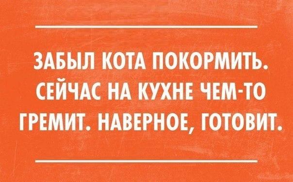 https://pp.vk.me/c606016/v606016138/7d5e/liPONZFENsk.jpg