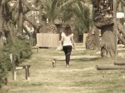 How to walk like model taking fresh air with my dog / walking at the beach