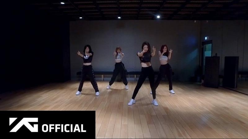 BLACKPINK '뚜두뚜두 DDU DU DDU DU ' DANCE PRACTICE VIDEO MOVING VER