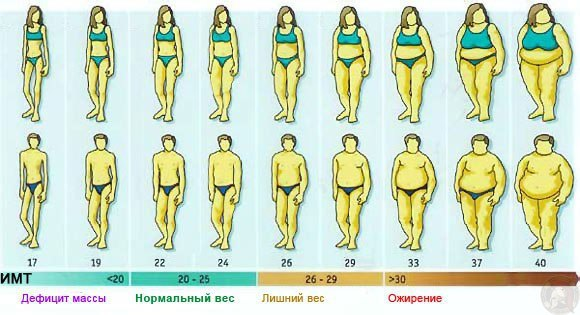 Аллен Карр Легкий способ сбросить вес  edimkaru