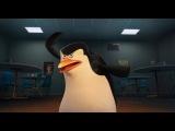 «Пингвины Мадагаскара» (2014): Трейлер №2 / http://www.kinopoisk.ru/film/607608/