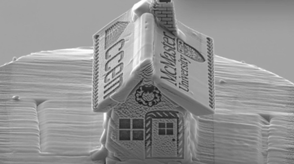 Накануне зимних праздников в Канаде создали самый крохотный пряничный домик в мире Его размер - меньше 1/10 толщины человеческого волоса. Творение сотрудника Университета Макмастера в Онтарио