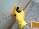 Простой способ убрать грибок со стен2