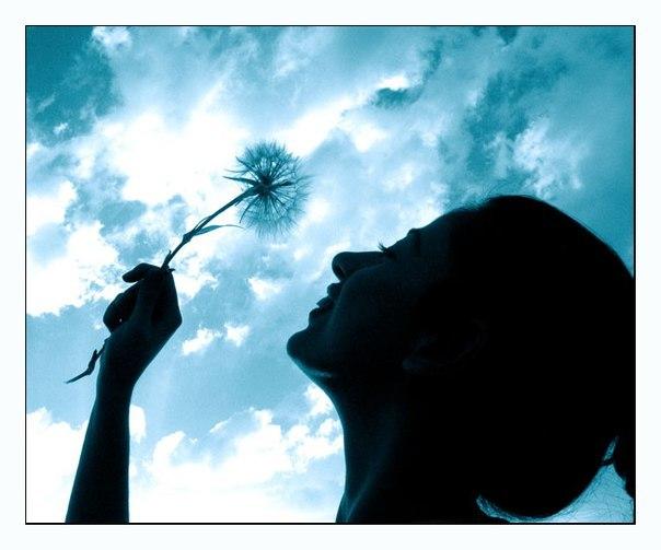 Мудрые и светлые мотиваторы о жизни (107 фото)