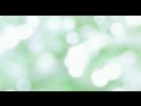 Bvlgari Omnia Green Jade Eau de Toilette 720p