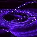 Светодиодная лента UV свечения.  60 ультрафиолетовых светодиодов на метр.