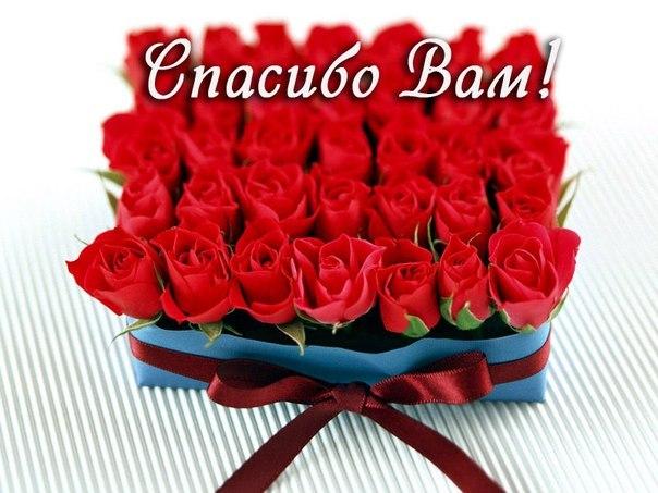 Спасибо За Поздравления Девочки!!!)))))