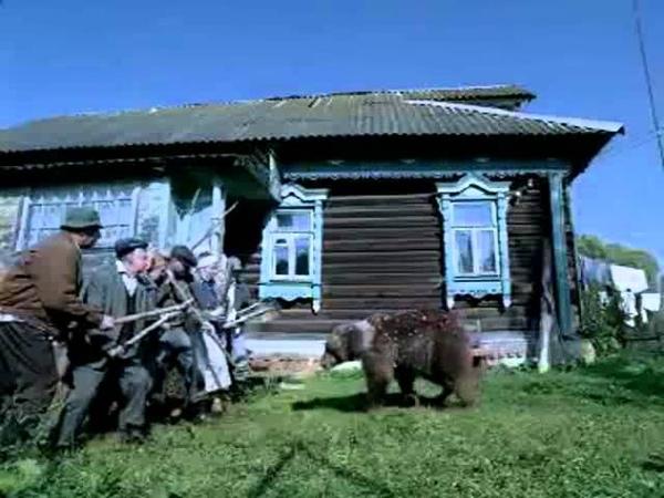 Медведь и Skittles