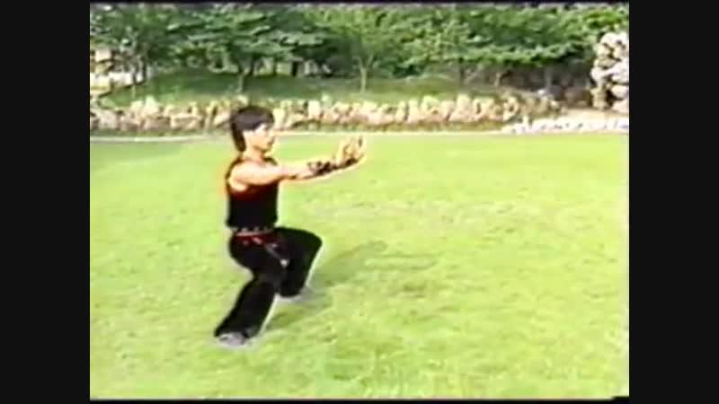 Nanquan Routine 1 (Chinese Wushu Association)