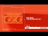 Ferry Corsten - I Love You (Wont Give It Up)