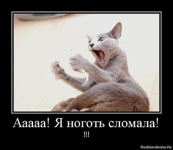 Шеллак мастер класс 2012 пошагово #8