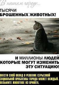 Кузярушка Данко