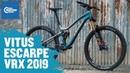 Vitus Escarpe VRX 2019 CRC