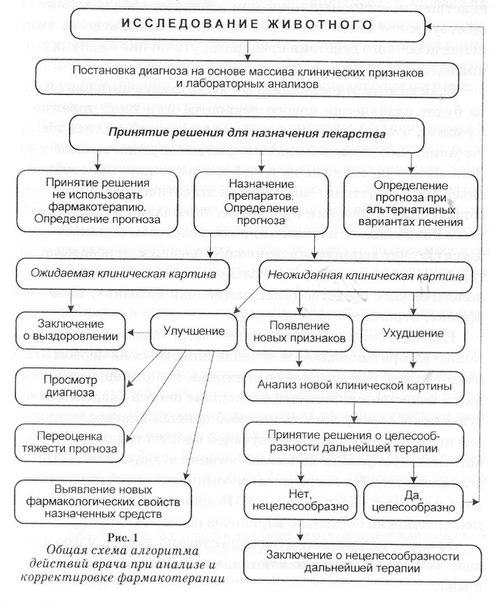 Общая схема алгоритма действий